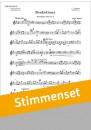 Beskidiana Slowenischer Tanz 2